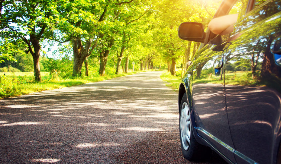 6 Spring Driving Safety Tips