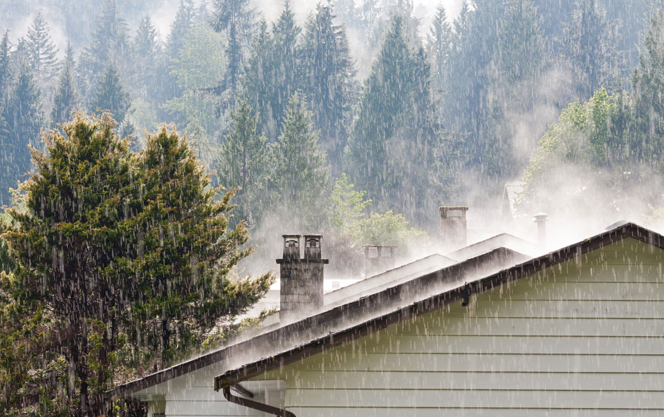 Weather the Storm Season: 12 Preparation Tips